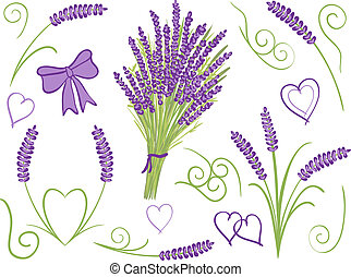 Illustration of lavender design elements - Illustration of ...