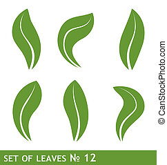 Illustration of leaves set for design