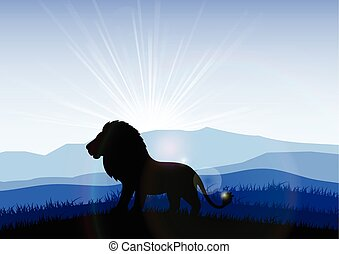 Lion in the field at dawn. Vector