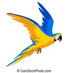 Illustration of macaw parrot. Tropical exotic bird on white background.