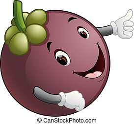 mangosteen with face