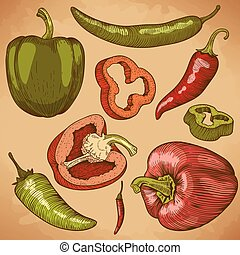 illustration of many peppers
