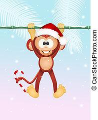 monkey at Christmas