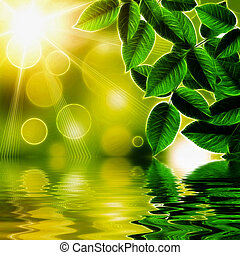 Illustration of natural green background reflected in water