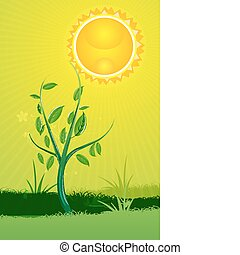 nature card with sun