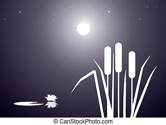lake - illustration of nightly landscape of lake