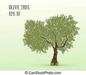 Illustration of olive tree