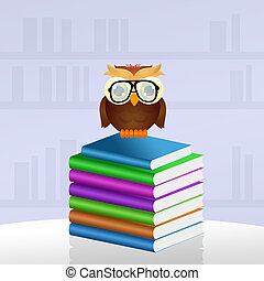 owl reads books