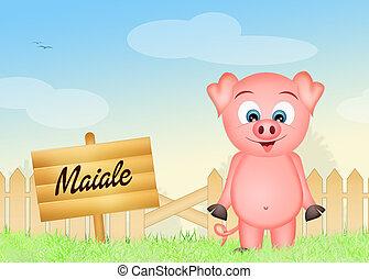 pig - illustration of pig