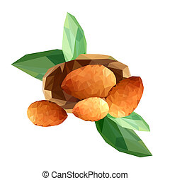 Illustration of polygonal almond seeds