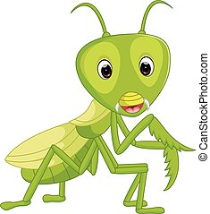 illustration of Praying mantis grasshopper cartoon