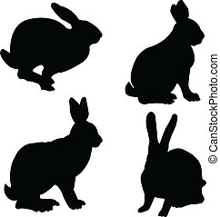 rabbits collection - vector