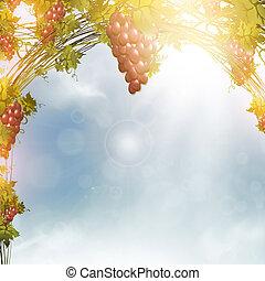 red grape - Illustration of red grape vine frame over blue...