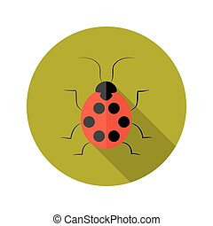 Red Lady Bug flat icon