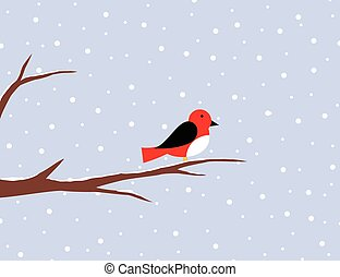 Red robin on a birch in snow