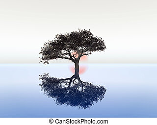serenity - illustration of serenity and zen