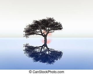 illustration of serenity and zen