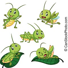 set collection grasshopper cartoon