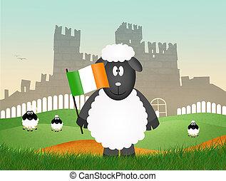 sheep with irish flag - illustration of sheep with irish...