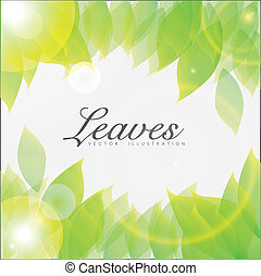 Illustration of shiny leaves