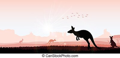 Silhouette kangaroo in the evening