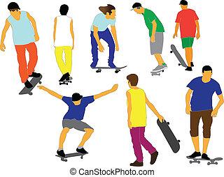 skateboards collection - vector