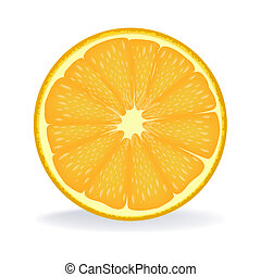 slice of orange - illustration of slice of orange on...
