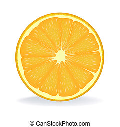 slice of orange - illustration of slice of orange on...