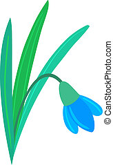 Illustration of Snowdrop