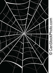 spider web - illustration of spider web