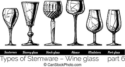 illustration of Stemware types - Types of wine glass....