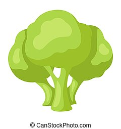 Illustration of stylized broccoli. Icon in carton style.