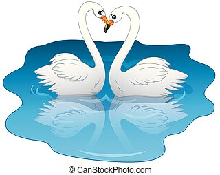 Swan couples on the lake