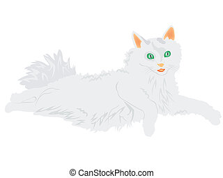 Illustration of the cat