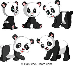 the collection of the cute panda with different posing