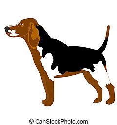 Illustration of the dog on white