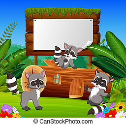 the nature garden view with the wooden board blank space and three happy raccoon
