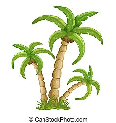 Illustration of the palm trees