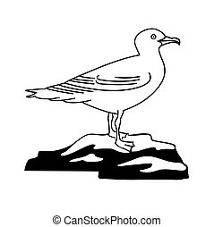 illustration of the sea gull on white background