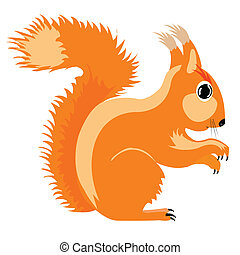 Illustration of the squirrel on white background is...