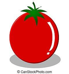 illustration of tomato on white