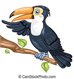 Illustration of toucan