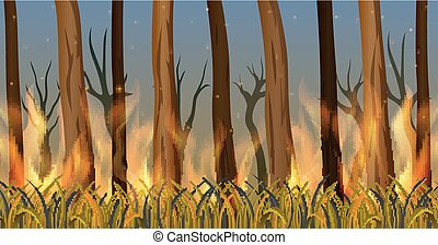 Trees in forest on fire