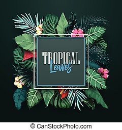 Tropical forest with square frame on black background