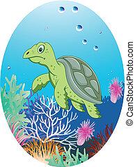 turtle in underwater