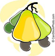 Illustration of two Cashew nut fruit