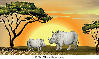 rhinocerous - illustration of two rhinocerous under the tree