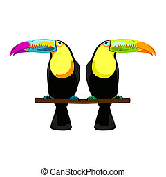 illustration of two toucans on white background