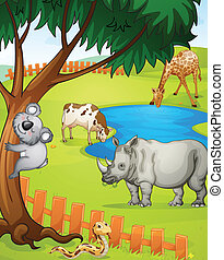 various animals - illustration of various animals in nature