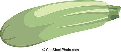 Illustration of vegetable marrow.